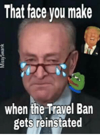 Lol, Travel, and Conservative: That face you make  when the Travel Ban  gets reinstated LOL!