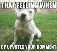 That Feeling When, Score, and Comment: THAT FEELING WHEN  OP UPVOTES YOUR COMMENT <p>When your point score goes from 1 to 2 instantly</p>