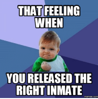 right-on: THAT FEELING  WHEN  YOU RELEASED THE  RIGHT INMATE  Memes. COM