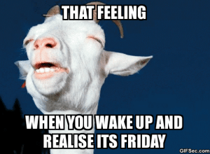 Funny tgif Memes: THAT FEELING  WHEN YOU WAKE UP AND  REALISE ITS FRIDAY  GIFSec.com Funny tgif Memes