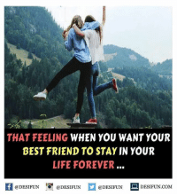 Twitter: BLB247 Snapchat : BELIKEBRO.COM belikebro sarcasm Follow @be.like.bro: THAT FEELING WHEN YOU WANT YOUR  BEST FRIEND TO STAY IN YOUR  LIFE FOREVER.  @DESIFUN  @DESIFUN  @DESIFUN  DESIFUN COM Twitter: BLB247 Snapchat : BELIKEBRO.COM belikebro sarcasm Follow @be.like.bro