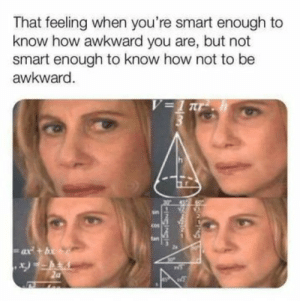Meirl: That feeling when you're smart enough to  know how awkward you are, but not  smart enough to know how not to be  awkward.  V=1 r  tan  ax+b  -INGINS  SSS Meirl