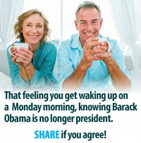 Isn't that an awesome feeling?  There Is PANIC In The Diabetes Industry! Big Pharma executives can't believe their eyes. SEE WHY CLICK HERE ►► http://u-read.org/no-diabetes: That feeling you get waking up on  a Monday morning, knowing Barack  Obama is no longer president.  SHARE  if you agree! Isn't that an awesome feeling?  There Is PANIC In The Diabetes Industry! Big Pharma executives can't believe their eyes. SEE WHY CLICK HERE ►► http://u-read.org/no-diabetes