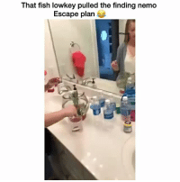 That was slick af 😂😂😂😂 👉🏽(via: cacy_carmichael-twitter): That fish lowkey pulled the finding nemo  Escape plan That was slick af 😂😂😂😂 👉🏽(via: cacy_carmichael-twitter)