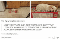 Follow me @x__social_butterfly__x: that-flighty-temptress-adventure:  SHES TOO LITTLE TO EVEN DENT THE FREAKING EMPTY FRUIT  LOOPS BOX BY SLEEPING ON TOP OF IT SHE IS 1 POUND OF PURE  FLUFF JESUS CHRIST MY HEART CAN'T TAKE IT  Source: that-flighty-tem...  669,890 notes Follow me @x__social_butterfly__x