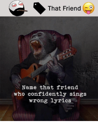Be Like, Meme, and Memes: That Friend -9  Name that friend  who confidently sings  wrong lyrics Twitter: BLB247 Snapchat : BELIKEBRO.COM belikebro sarcasm meme Follow @be.like.bro
