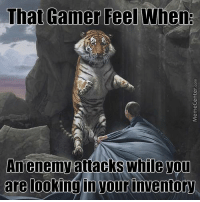 Leave me alone, dammit!: That Gamer Feel When:  An enemy attacks while ou  are looking in your inventory Leave me alone, dammit!