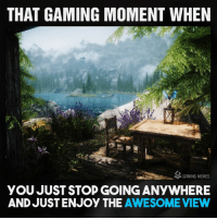 True: THAT GAMING MOMENT WHEN  M GAMING MEMES  YOU JUST STOP GOINGANYWHERE  AND JUST ENJOY THE  AWESOME VIEW True