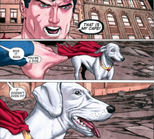God, Oh My God, and Tumblr: THAT IS  MY CAPE  GIVE  IT  BACK YOU'RE  A DOG  IT  DOESN'T  EVEN FIT seattle138:  dancingqueenstillateen:  lucyliuism:  g0thamsreckoning:  oh my gOD  i hAVE BEEN LAUGHING AT THIS FOR 29834798234 YEARS  IT DOESNT EVEN FIT   You're a dog