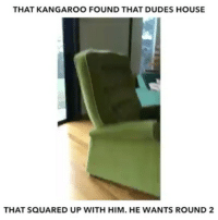 Memes, House, and Husband: THAT KANGAROO FOUND THAT DUDES HOUSE  THAT SQUARED UP WITH HIM. HE WANTS ROUND 2 Remember the guy who punched the kangaroo to save his dog? Now that kangaroo's husband found the guys house and wants round 2 😂😂😂
