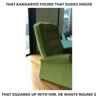 """Comment """" OMG """" letter by letter without getting interrupted, I bet you'll fail😂: THAT KANGAROO FOUND THAT DUDES HOUSE  THAT SQUARED UP WITH HIM. HE WANTS ROUND 2 Comment """" OMG """" letter by letter without getting interrupted, I bet you'll fail😂"""