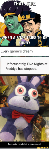 25+ Best Five Night at Freddy Memes | Five Night at Freddys