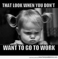 Dank, Funny, and Work: THAT LOOK WHEN YOU DON'T  WANT TO GO TO WORK  o www.funny wallphotos.com