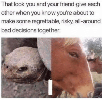 Bad, Regrettable, and Decisions: That look you and your friend give each  other when you know you're about to  make some regrettable, risky, all-around  bad decisions together: Bout to risk it all..😂