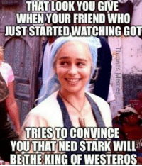 Westero: THAT LOOK YOU GIVE  WHEN YOUR FRIEND WHO  JUST STARTEDWATCHING GOT  URIESLO CONVINCE  YOUTHAT NED STARK WILL  BETHE KING OF WESTEROS