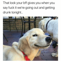 Drunk, Funny, and Fuck: That look your bff gives you when you  say fuck it we're going out and getting  drunk tonight.. You're gosh darn right😏 girlsthinkimfunnytwitter fridayfeels drinkdrankdrunk doggoknowsbest