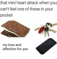 Love, Memes, and Heart: that mini heart attack when you  can't feel one of these in your  pocket  my love and  affection for you https://t.co/d9NPXvSztj