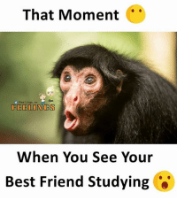 Tag Your Friends 😜: That Moment  /Feelings.wa  FEELONGS  When You See Your  Best Friend Studying *' Tag Your Friends 😜