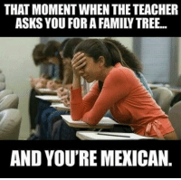that moment when: THAT MOMENT WHEN THE TEACHER  ASKS YOU FORA FAMILY TREE...  AND YOU'RE MEXICAN