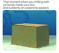 I hate when this happens: That moment when you chilling with  ya homie inside your box  and suddenly an avalanche appears I hate when this happens