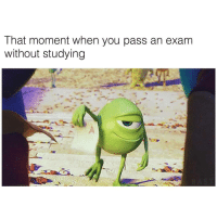 Tumblr, Http, and Com: That moment when you pass an exam  without studying If you are a student Follow @studentlifeproblems