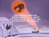 Cats, Chase, and Giant: That moment when you  realize Lion O shines a giant  ed laser pointer dot in the sky  And the other cats chase it. This Has Me Shook