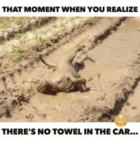 towel: THAT MOMENT WHEN YOU REALIZE  THERE'S NO TOWEL IN THE CAR...