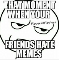 hate: THAT MOMENT  WHEN YOUR  Flowers RFlawless  FRIENDS HATE  MEMES