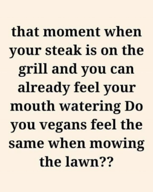 steak: that moment when  your steak is on the  grill and you can  already feel your  mouth watering Do  you vegans feel the  same when mowing  the lawn??
