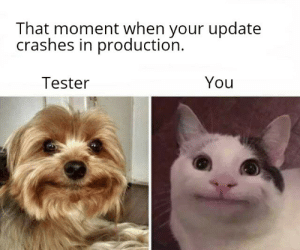 Moment, You, and That Moment When: That moment when your update  crashes in production  You  Tester I exactly had the same expression