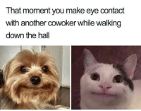 Smile, Another, and Eye: That moment you make eye contact  with another cowoker while walking  down the hall Try and bring a smile to their dial