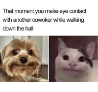 Another, Eye, and Down: That moment you make eye contact  with another cowoker while walking  down the hall Why am I this way