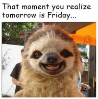Which means 6 more school days until springbreak!!!!!: That moment you realize  tomorrow is Friday Which means 6 more school days until springbreak!!!!!