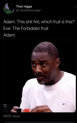 Fire, Shit, and Hell: That nigga  @_Gyaldemsugar  Adam: This shit fire, which fruit is this?  Eve: The Forbidden fruit  Adam:  880K views The hell you say?