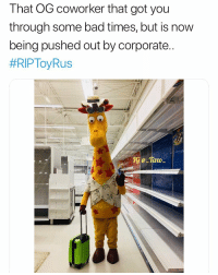 Bad, Memes, and 🤖: That OG coworker that got you  through some bad times, but is now  being pushed out by corporate  😢😢