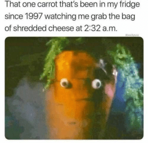 Memes, Been, and Cheese: That one carrot that's been in my fridge  since 1997 watching me grab the bag  of shredded cheese at 2:32 a.m.  ckyn 42 Pics And Memes That Will Make You Laugh