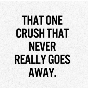 Crush, Never, and One: THAT ONE  CRUSH THAT  NEVER  REALLY GOES  AWAY