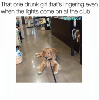 Memes, 🤖, and Becky: That one drunk girl that's lingering even  when the lights come on at the club  OS Come on Becky let's get you home. weallknowabecky Original vid via @livingthatgoldenlife