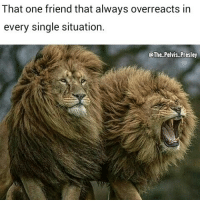 Memes, Square Up, and Lemonade: That one friend that always overreacts in  every single situation.  @The Pelvis Presley Kid: you guy's want to buy my lemonade? Friend: so, you're saying we're thirsty dudes?...square up fam.😩😬😕 Follow me @the_pelvis_presley bff lion nature wildlife friends lemonade