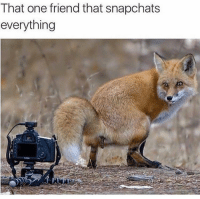 Dank, One, and Friend: That one friend that snapchats  everything  0 Me