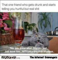 tiny dick: That one friend who gets drunk and starts  telling you hurtful but real shit  You.you know what..Sharon...just..  .just leave him...he's got a tiny dick an  yways..  The intenet Scavengers
