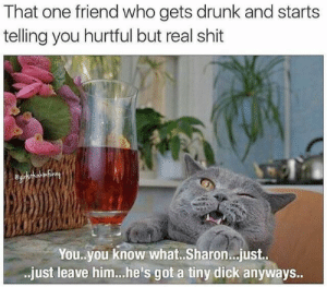 tiny dick: That one friend who gets drunk and starts  telling you hurtful but real shit  You.you know what.. Sharon..just.  just leave him..he's got a tiny dick anyways..