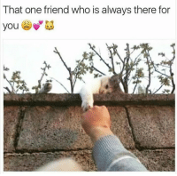 Who, One, and Friend: That one friend who is always there for  you