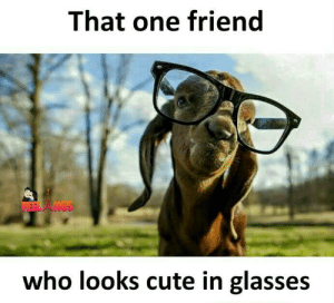 Cute, Memes, and Glasses: That one friend  who looks cute in glasses