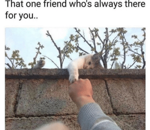 One, Friend, and You: That one friend who's always there  for you..