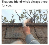 Friends, Funny, and Lol: That one friend who's always there  for you.. Tag a friends lol
