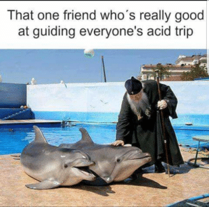 We all know that one guy by despisesunrise MORE MEMES: That one friend who's really good  at guiding everyone's acid trip We all know that one guy by despisesunrise MORE MEMES