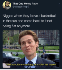 Basketball, Funny, and Meme: That One Meme Page  astaggeringlG  96-291845  Niggas when they leave a basketball  in the sun and come back to it not  being flat anymore  @staggering  You know l'm something of a scientist myself Niggas keep talking bout how LeBron the greatest basketball player of all time like they haven't heard of this nigga ⛹🏾♂️👈 yes that nigga @larnite • ➫➫➫ Follow @Staggering for more funny posts daily!