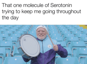 "Dank, Memes, and Target: That one molecule of Serotonin  trying to keep me going throughout  the day ""You can do it"" by dickfromaccounting MORE MEMES"