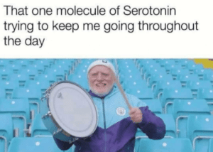 meirl: That one molecule of Serotonin  trying to keep me going throughout  the day  20 meirl